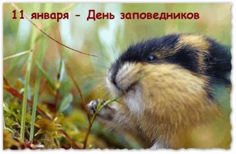 11 января – День заповедников и природных парков России