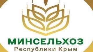 Крымское пиво получило заслуженные золотые и бронзовые медали в Москве