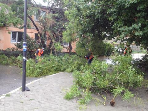 На борьбу  с последствиями стихии