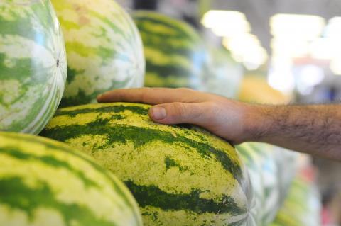 Рекомендации при покупке бахчевых культур.  Август месяц -пора арбузов и дынь